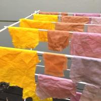 Fabric Dyeing Workshops in Sydney