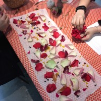 Botantical Natural Dyeing Classes in Sydney