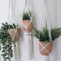 Online Macrame Plant Hanger Workshops